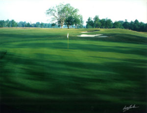 #11 Green and Fairway